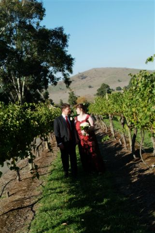 The Bride & Groom in the Vines at Fergussons Winery